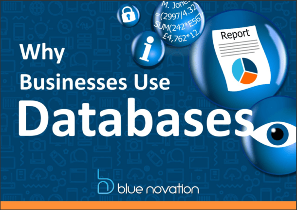 Why Businesses Use Databases Report